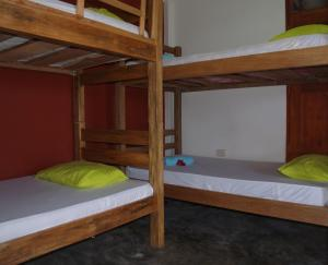 A bunk bed or bunk beds in a room at Coccoloba Beach Hotel