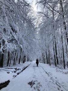 Gut Kalkhäuschen, ein Ort mit Geschichte during the winter
