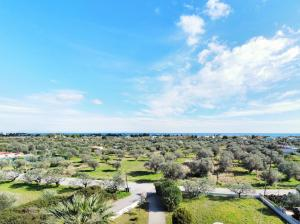 A bird's-eye view of Villa Olive Grove
