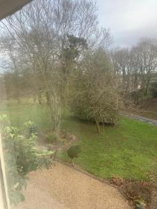 A garden outside Scarborough Hill Country Inn