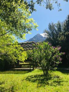 A garden outside Theasis-Igloo
