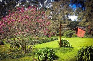 Un jardín fuera de Posada del Viento