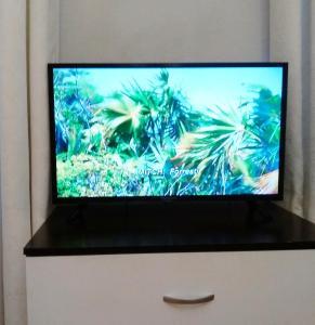 Телевизор и/или развлекательный центр в Квартира у Мариинского театра