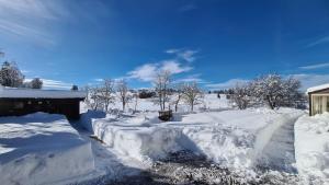 L'établissement MV Vacances en hiver