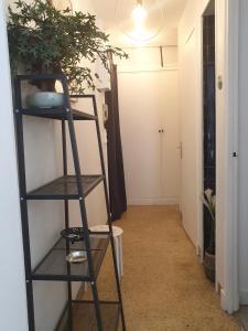 A bunk bed or bunk beds in a room at T1 avec parking à 2mn de la gare