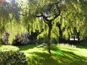 Zahrada ubytování Ferienwohnungen Familie Wetzlinger
