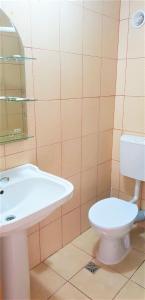 A bathroom at Pensiunea Andrea Maria