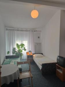 Łóżko lub łóżka w pokoju w obiekcie Willa Janina
