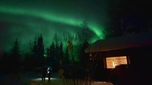 Lapin Paradise durante l'inverno