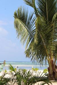 נוף כללי של ים או נוף לים שצולם מאתר הנופש