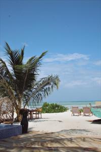 חוף באתר נופש או בסביבה