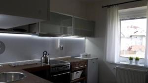 Kuchyň nebo kuchyňský kout v ubytování Apartments Centrum