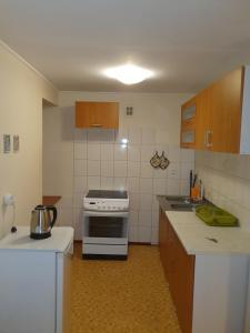 A kitchen or kitchenette at Apartamenty Kopernika