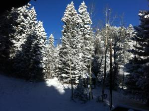 Elk Run Bed and Breakfast during the winter