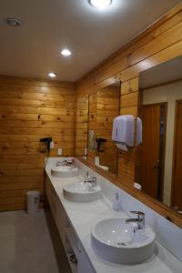 A bathroom at Altamont Lodge