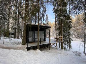 Greenvald Park Scandinavia зимой