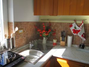 Kuhinja ili čajna kuhinja u objektu Apartment JULIJA 1