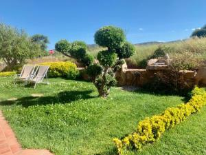 A garden outside Residence Solaria
