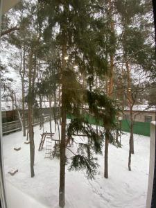 Apartments on Dachnaya 1 during the winter