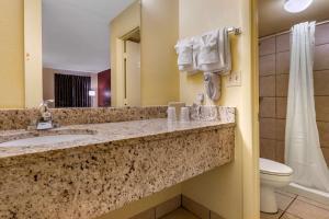 A bathroom at Econo Lodge Inn & Suites Maingate Central