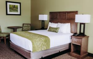A bed or beds in a room at Pacific Inn Motel