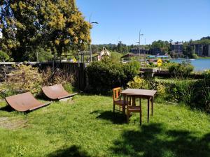 A garden outside Chili Kiwi Lakefront Backpackers