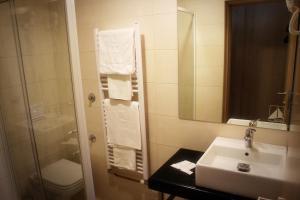 A bathroom at Hotel Hajducke Vode