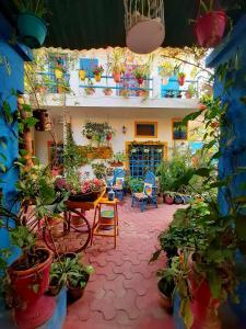 Un restaurante o sitio para comer en The Coral House Homestay