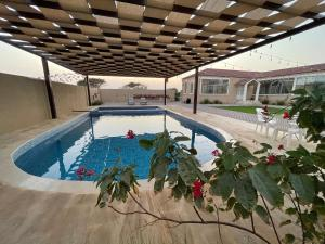 The swimming pool at or near Alreef farm