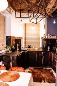 Kuchnia lub aneks kuchenny w obiekcie PORANEK W GÓRACH