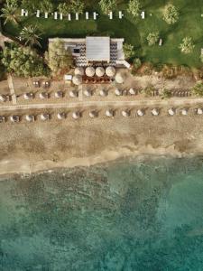 Cretan Malia Park a Member of Design Hotels с высоты птичьего полета