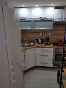Kuchyňa alebo kuchynka v ubytovaní Chata v Srdci Kremnických Hôr
