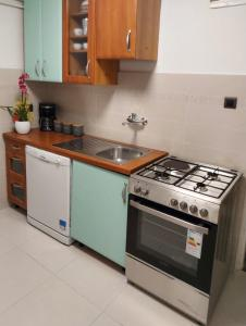 A kitchen or kitchenette at Istria Apartments Lila