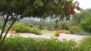 A garden outside Maria Caderina Green Village
