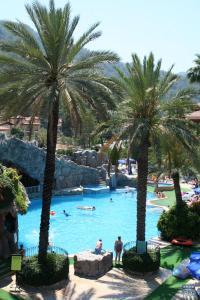 The swimming pool at or near Grand Aquarium