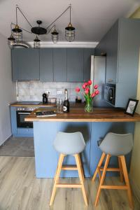 A kitchen or kitchenette at Dominic Apartment by the Forest