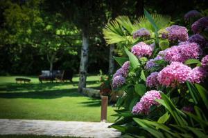 Сад в La Bastide des Salins