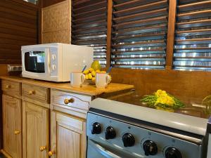 A kitchen or kitchenette at Bungalows Manuka 361 DTO-MT