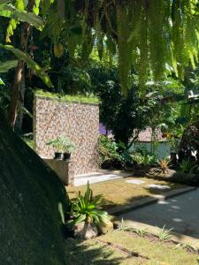 A garden outside Bicho Preguiça Hostel