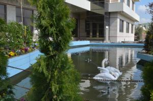 The swimming pool at or near Dawa Hotel and Restaurant