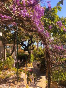 A garden outside Hotel Villa La Brise