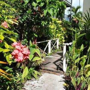 A garden outside Riviera Punta Cana Eco Travelers