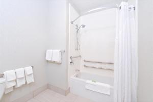 A bathroom at Holiday Inn Express Wixom, an IHG Hotel