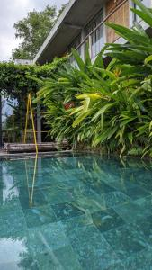 The swimming pool at or close to NANO ECO-HOSTEL