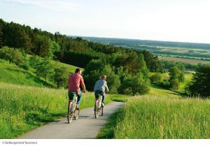 Radfahren an der Unterkunft Thermenhof PuchasPLUS Loipersdorf oder in der Nähe