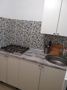 Кухня или мини-кухня в Guest house Granat