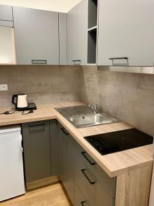 Kuchyň nebo kuchyňský kout v ubytování CENTRAL PARK FLORA