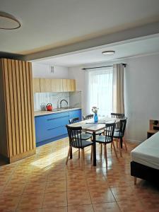 Kuchnia lub aneks kuchenny w obiekcie 4 Pory Roku Apartamenty Domki Pokoje