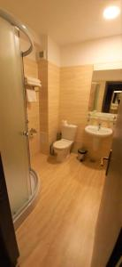 A bathroom at Hotel Dumbrava