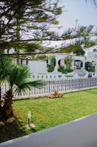Giardino di Faro Sun Life Hostel